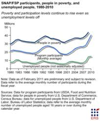 supplemental nutrition assistance program wikipedia