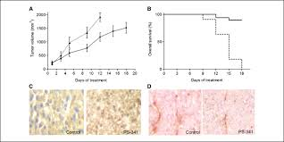 ubiquitin proteasome system stress sensitizes ovarian cancer to