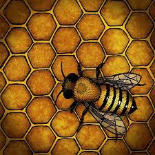 25 unique bumble bee cartoon ideas on pinterest honey bee