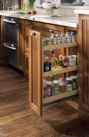 Kitchen Spice Racks For Cabinets Cabinets U0026 Drawer Racks Cabinet Kitchen Organizer Pull Out Spice