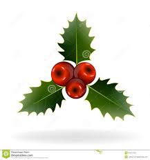 Christmas Decorations Holly Berries On White Background Christmas Decorations Stock