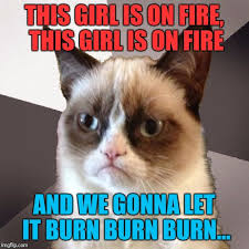 This Girl Is On Fire Meme - ellie keys alicia goulding whatever grumpy cat doesn t care