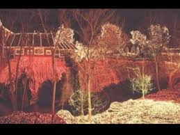 clifton ohio christmas lights legendary lights of clifton mill oh ohio find it here