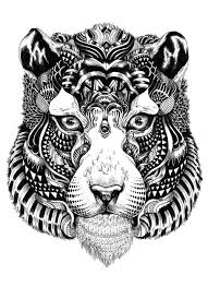 snow tiger coloring page coloring pages tigers tigers coloring pages an illustration of white