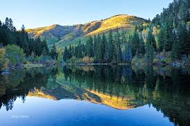 Colorado forest images Lizard lake reflection autumn 2010 bob dent photography jpg