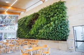 Wall Gardens Sydney by Vertical Gardens Green Wall Products Atlantis Australia