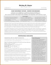 executive summary resume resume for your job application