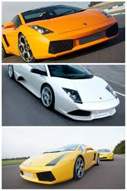 gold lamborghini with diamonds best 25 lamborghini models ideas on pinterest lamborghini