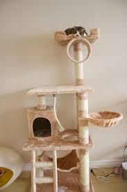 cat furniture boston cat tree u2013 kitty mansions