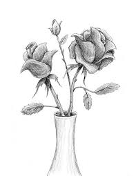 Vase Drawing How To Draw A Rose Lovetoknow