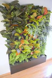Vertical Gardening Planters Phils And Ferns Vertical Garden U2014 Florafelt Vertical Garden Systems