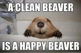 Clean Humor Memes - funny memes clean image memes at relatably com