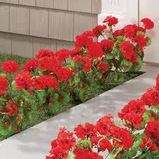 artificial red geraniums artificial oudoor flowers walter drake