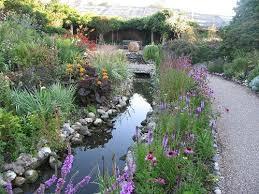 Wildlife Garden Ideas 83 Best Wildlife Garden Images On Pinterest Garden Ideas