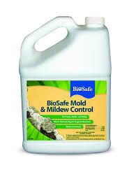 National Patios by Amazon Com Biosafe Mold And Mildew Control Concentrate 32 Oz