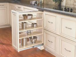 kitchen cabinet slide out shelves kitchen view roll out shelves for kitchen cabinets artistic