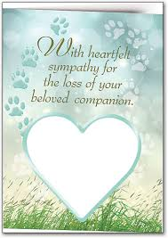 sympathy cards show compassion for the loss of a pet