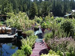 self sustaining garden couple dedicates 20 years to building a self sufficient floating
