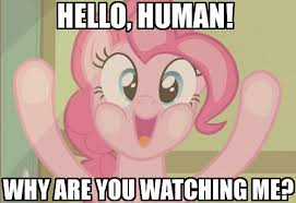 Pinkie Pie Meme - image 321313 pinkie pie breaking the 4th wall know your meme