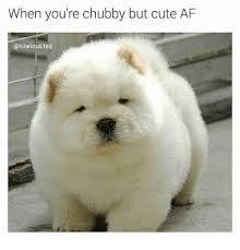 Chubby Meme - when you re chubby but cute af ted af meme on esmemes com
