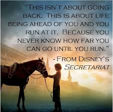 Love Best Quotes by 25 Best Horse Love Quotes Ideas On Pinterest Horse Quotes