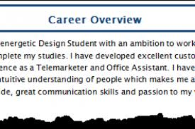 Career Summary Examples For Resume by Examples Of Summary For Resume Career Development Resume Summary
