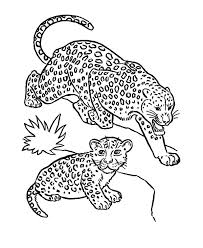 wild cat leopard coloring pages batch coloring