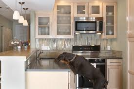 remodeled kitchens ideas 2000 kitchen kitchen designs photo gallery kitchen remodel ideas
