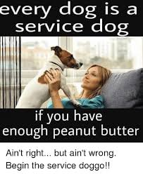 Peanut Butter Meme - every dog is a service dog if you have enough peanut butter ain t