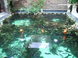 Backyard Fish Pond Ideas Fascinating Best 20 Indoor Pond Ideas On Pinterest Outdoor Fish