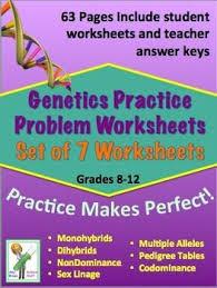 genetics practice problem worksheets set of 7 worksheets