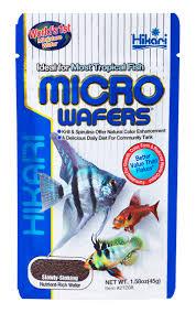 angelfish hikari sales usa