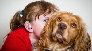 my deaf child and her hearing dog youtube