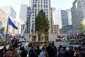 christmas on the way rockefeller center tree goes up nbc news