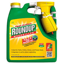 How To Remove Weeds From Patio Roundup Fast Action Ready To Use Weed Killer 3l Departments