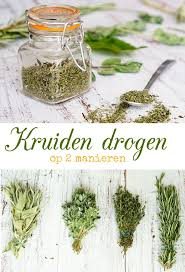 121 best groenten en kruiden images on pinterest gardening
