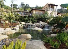 backyard ponds ideas