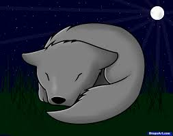 learn how to draw a sleeping wolf pup animals for kids for kids