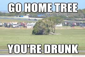 Tree Meme - fallen tree best go home you re drunk memes best go home you re