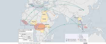 Ivory Coast Map The Secret Trade In Baby Chimps Bbc News