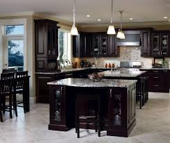 Espresso Colored Kitchen Cabinets Spresso Cabinets With Stainless Steel Appliances And Backsplash