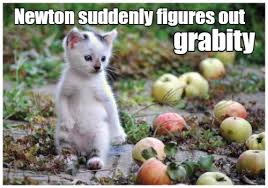 Funny Kitten Memes - lolcats kitten lol at funny cat memes funny cat pictures with