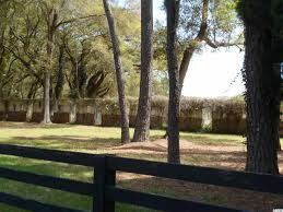 41a pawleys island area litchfie highway 17 property for sale