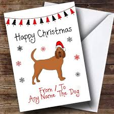 personalised cards christmas cards pet christmas cards page
