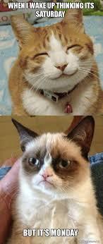 Thinking Cat Meme - when i wake up thinking its saturday but it s monday grumpy cat vs