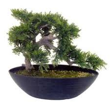 indoor artificial bonsai trees are a great way to accent your