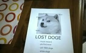 Doge Meme Original - lost doge meme original