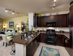 1 Bedroom Apartments Tampa Fl One Bedroom Apartments Tampa Fl Milana Reserve Apartment Homes