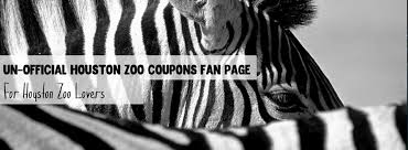 houston zoo lights coupon houston zoo coupons home facebook
