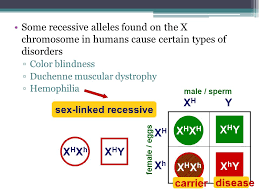 Cause Of Color Blindness The Parents Are Aabbccdd And Aabbccdd Ppt Download
